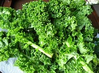 Fresh Kale - £ 1.20  per each