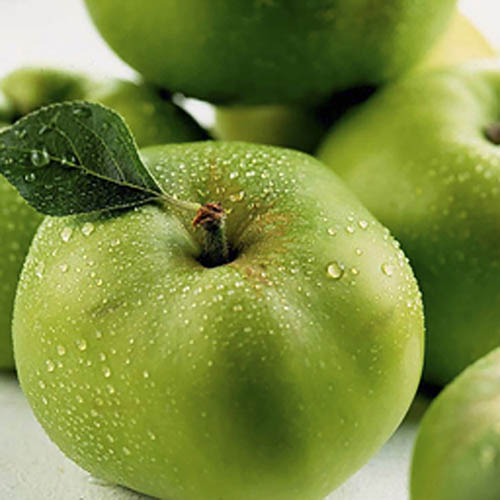 Fresh Apples Bramley (cooking) large - £ 0.80  per each