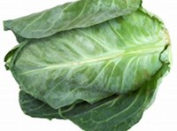 Fresh Cabbage Summer New Season - £ 1.00  per each