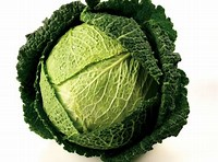 Fresh Cabbage Savoy - £ 1.20  per each