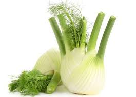 Fresh Fennel - £ 0.90  per each