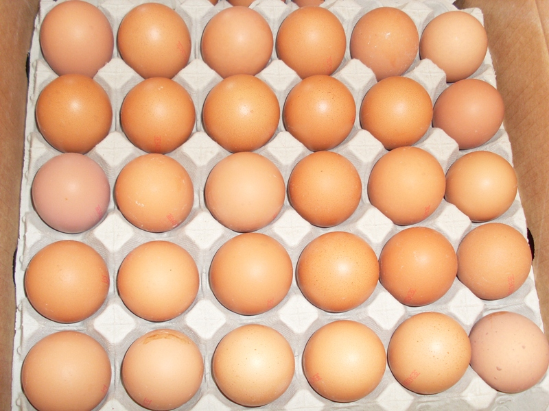 Fresh Local Medium eggs 0.5 dozen - £ 1.00  per packet