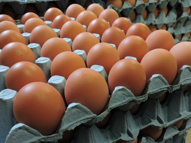 Fresh Local free range very large eggs 0.5 dozen - £ 1.50  per box